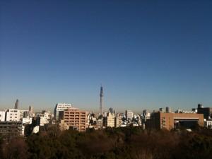Tokyo Skytree 2011-01-08