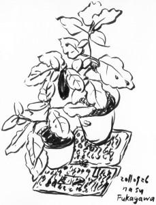 深川の茄子