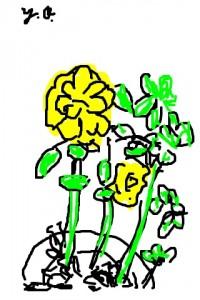 iPhoneスケッチ「花」