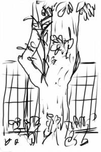 iPhoneアプリでスケッチ「木」