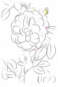 モーニング指スケッチ「黄色い花」