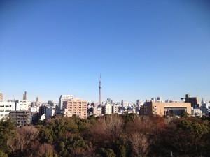 2013年1月1日、バルコニーから東京スカイツリーを