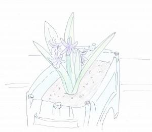 勝手に咲いた紫の花