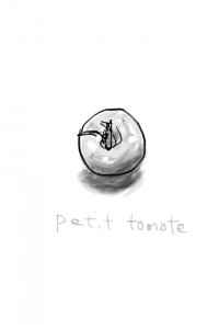 スケッチ「プチトマト」